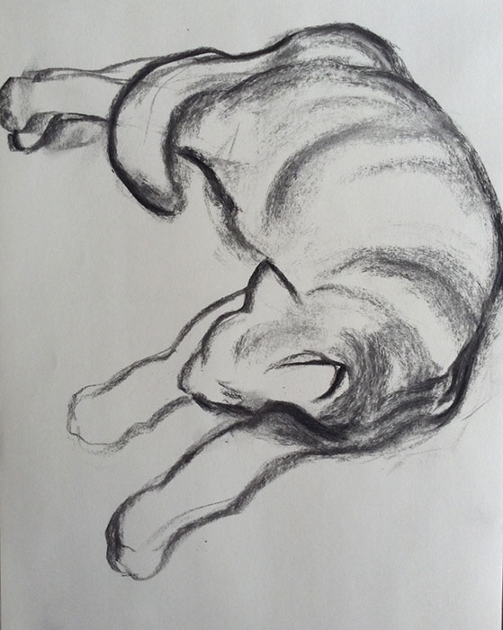 GONZALO_MARTIN-CALERO-DRAWINGS-cat-drawings-02.jpg