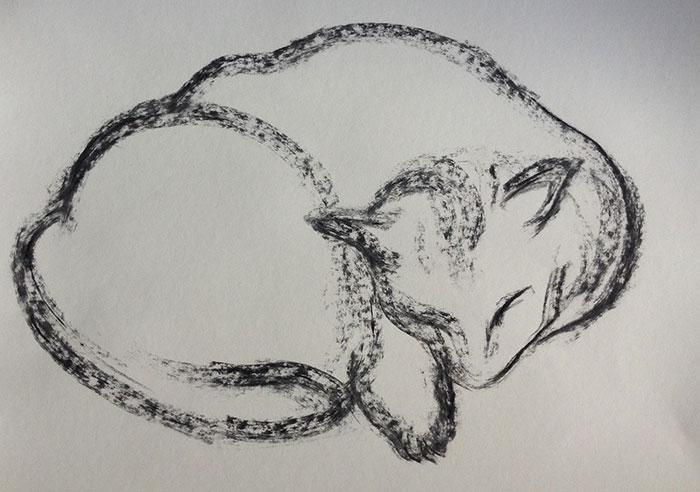 GONZALO_MARTIN-CALERO-DRAWINGS-cat-drawings-06.jpg