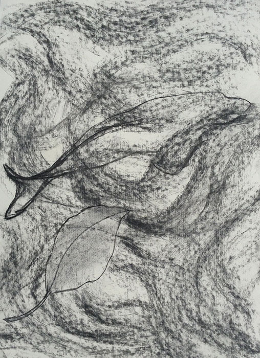 GONZALO_MARTIN-CALERO-DRAWINGS-fish-drawings-009.jpg