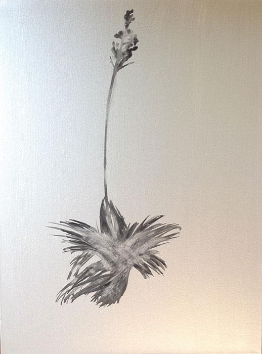 GONZALO-MARTIN-CALERO-new_mexico_desert_flowers-paintings-021.jpg