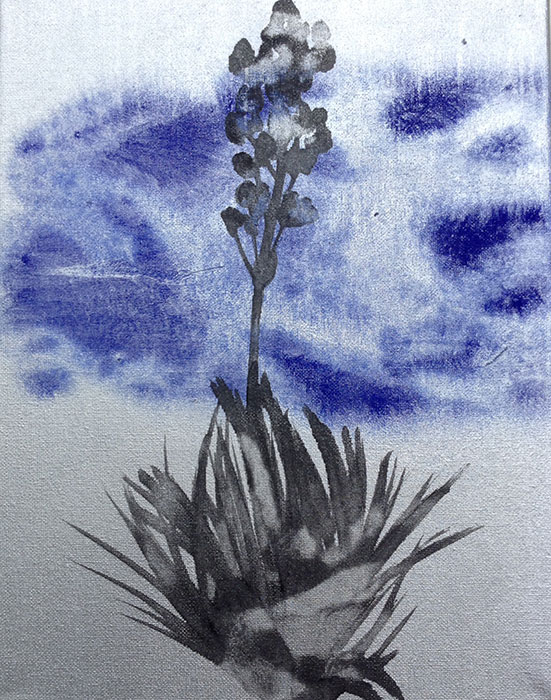 GONZALO-MARTIN-CALERO-new_mexico_desert_flowers-paintings-049.jpg