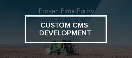 CMS.jpg