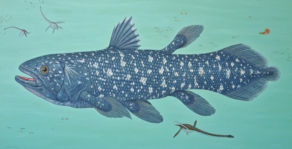 Coelacanth and Elasmosaurs