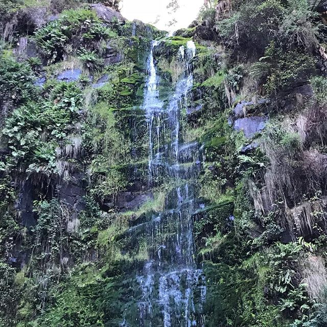 The beautiful Erskine Falls in Otway National Park. Perfect for recharging.