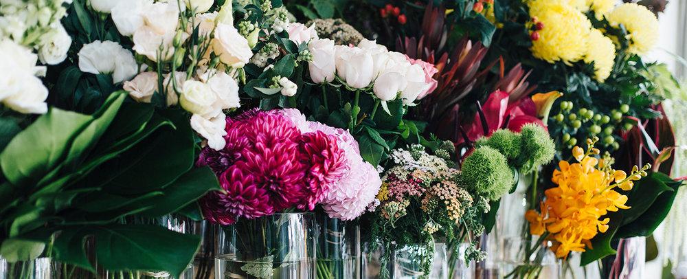 ByHollyRosePhoto-FloralImpressions-2732@0,25x.jpg