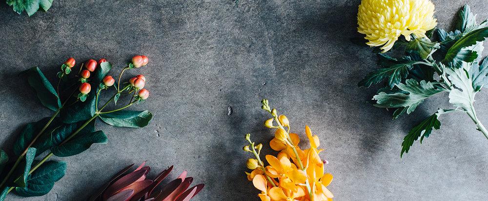 ByHollyRosePhoto-FloralImpressions-2656@0,25x.jpg