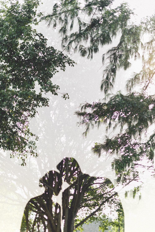 kn-0064.jpg