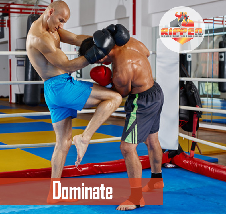 Dominate_Martial Arts.jpg