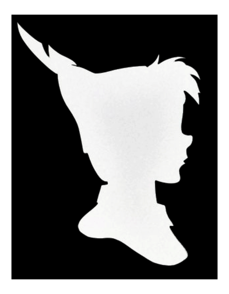 pan play white logo.PNG
