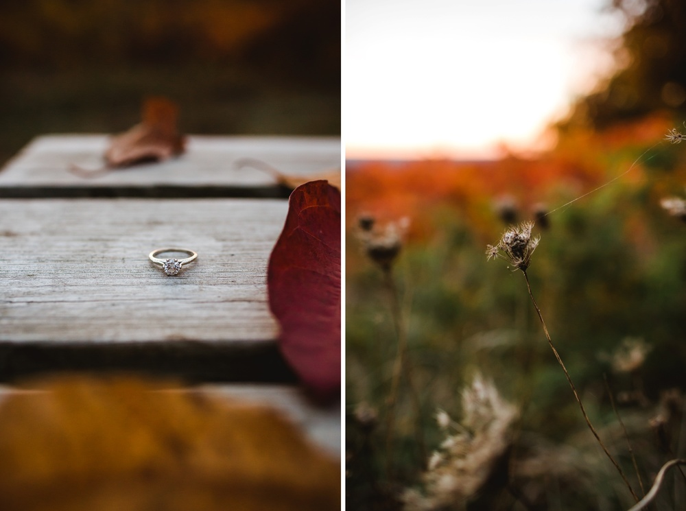 Brown County Indianapolis Engagement Photographer