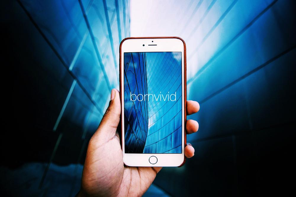 Bornvivid Theme