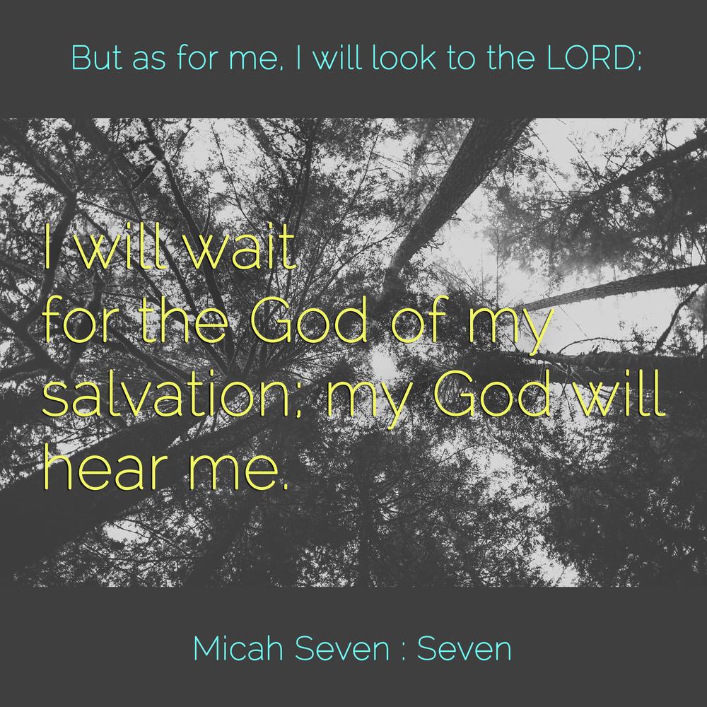 WW Micah7-7.jpg