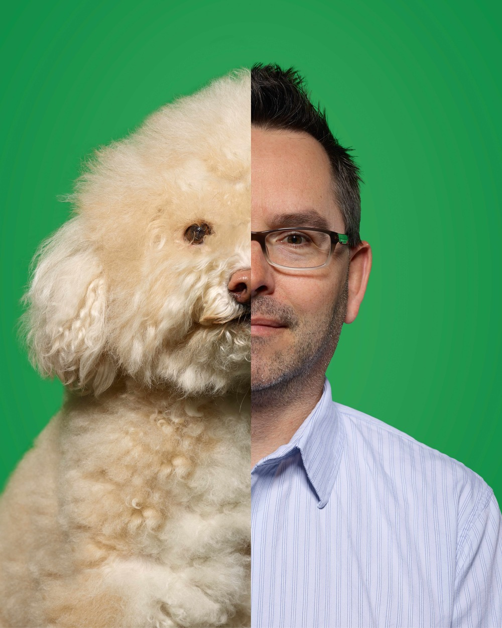Chris Sheridan: Senior Editor As Senior Editor at Bic, Chris can cut anything from a comedic music videos to a more poignant spot. But no matter what it is, his goal is always the same — take bits and pieces of a story and weave them together for maximum impact and emotion. Shaggy is a Bichon Poodle with a different hairstyle every month. Both are massive Jayhawk fans.