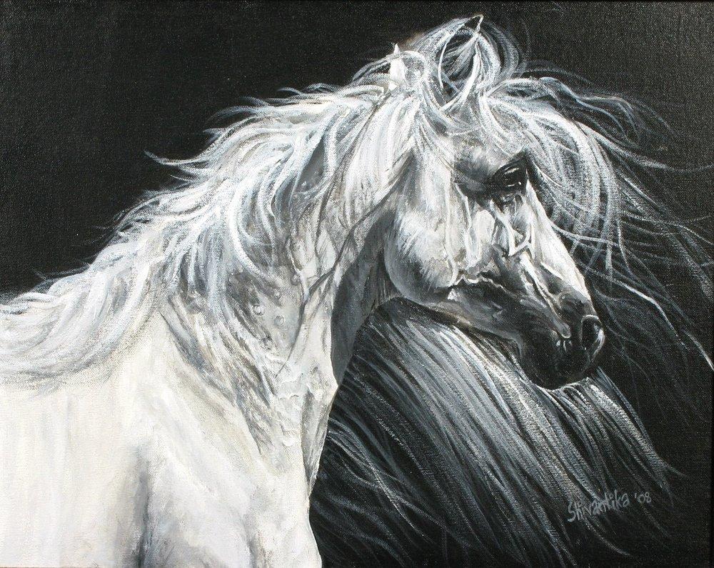 Horse_Thumb.JPG