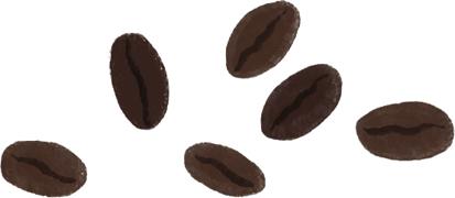 Coffee Beans Illustration