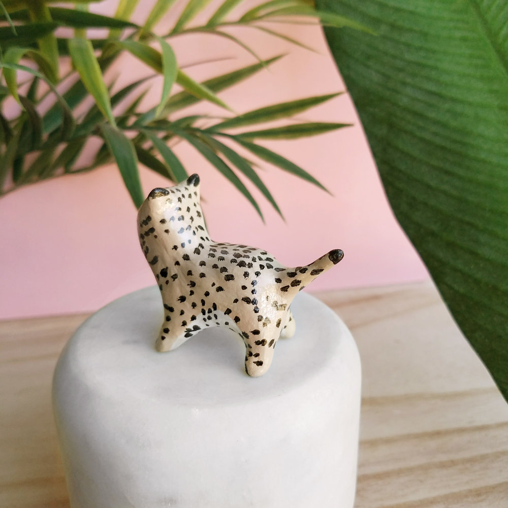 cheetah004.jpg