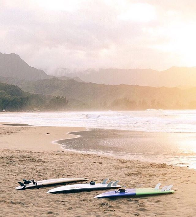 What we'll be doing all day today! Sun & surfing until sunset! Who's joining? ☀️🏄🏼💦 #nalubowls via @gypsea_lust