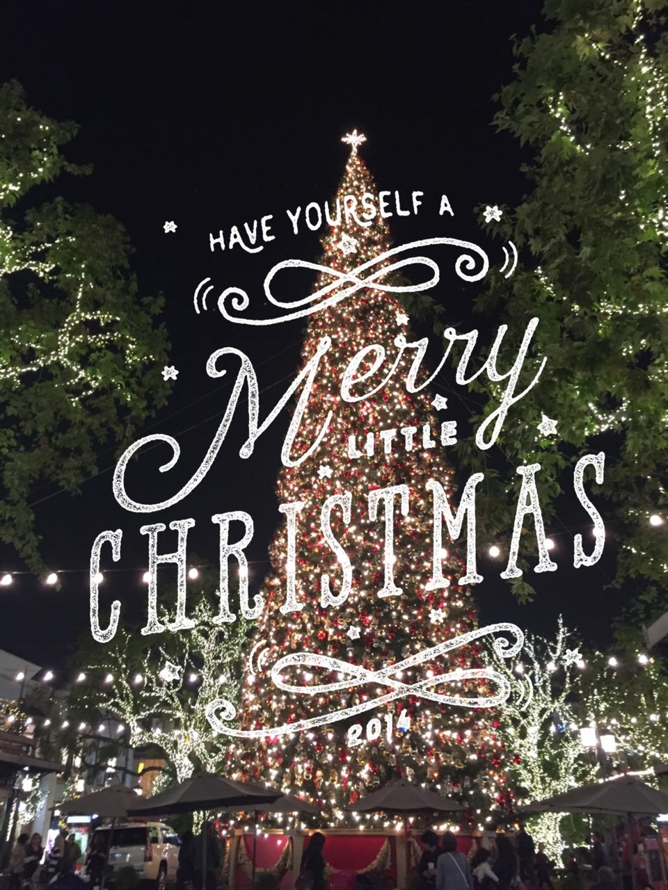 Merry Merry! xo -A
