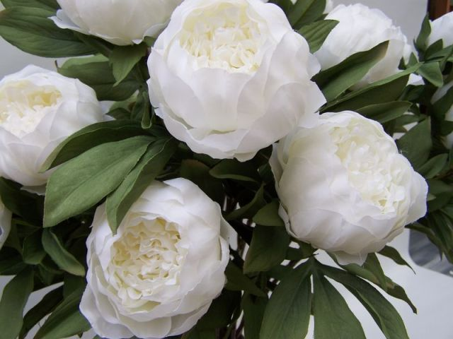Because white flowers are one of my favorite things. xo -A