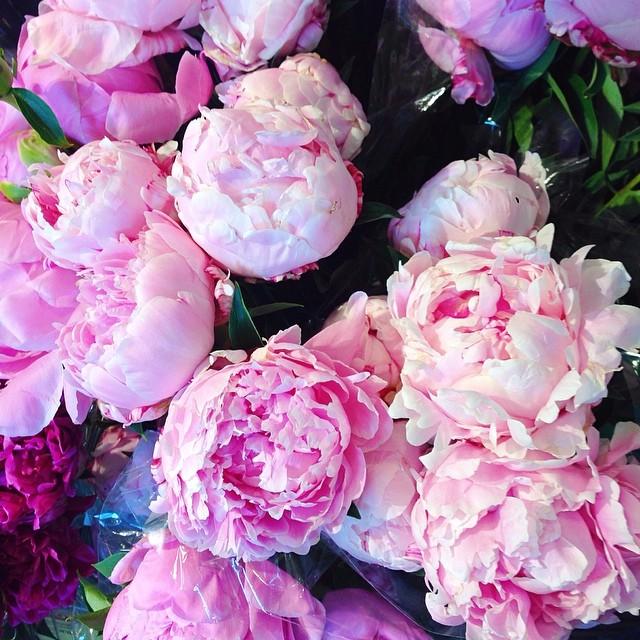 I love flowers. xo -A