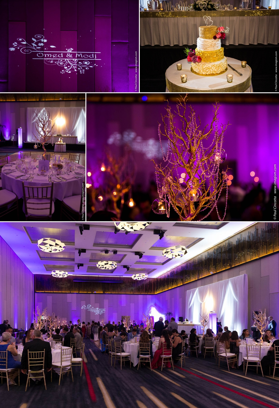 Gold Coast Wedding Photographer - imagism Photography by Paul Cincotta 20.jpg