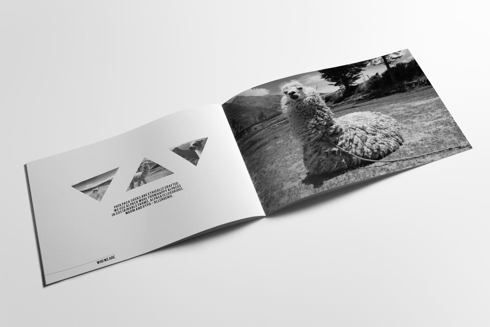 01-brochure-landscape-a4.jpg