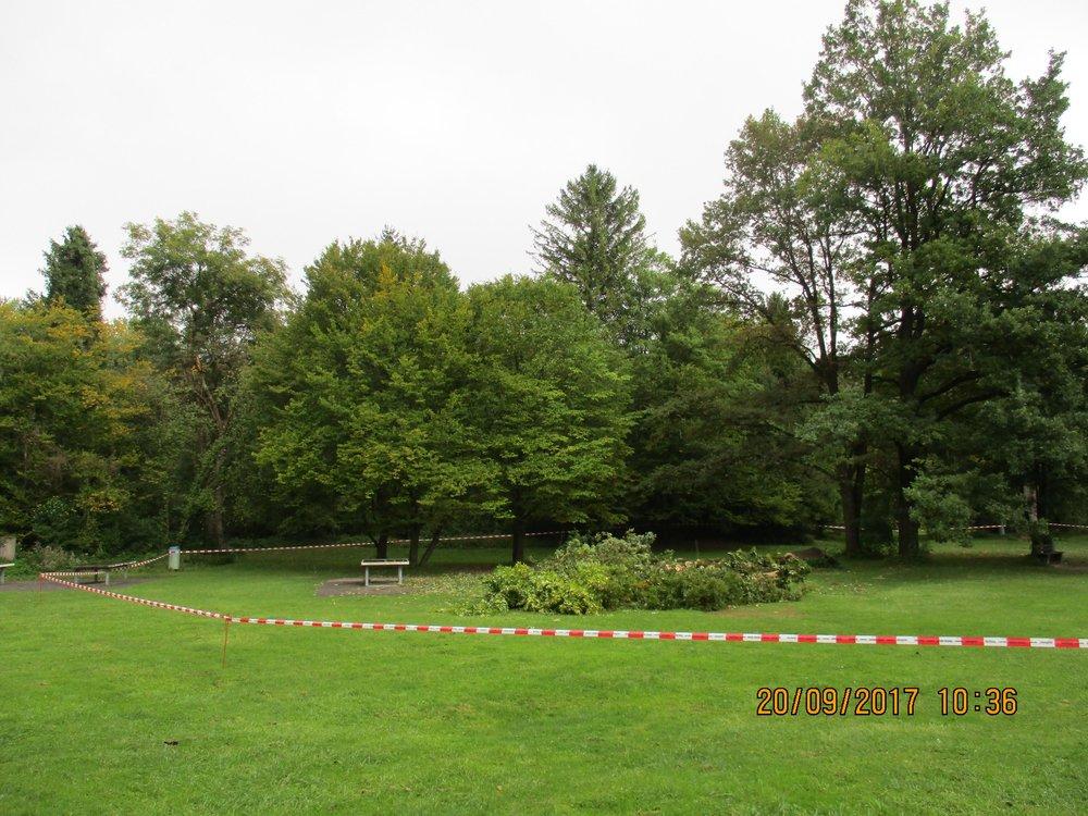 Um die Besucherinnen und Besucher zu schützen, wurde bis zur Ursachenklärung der Bereich weiträumig abgesperrt.