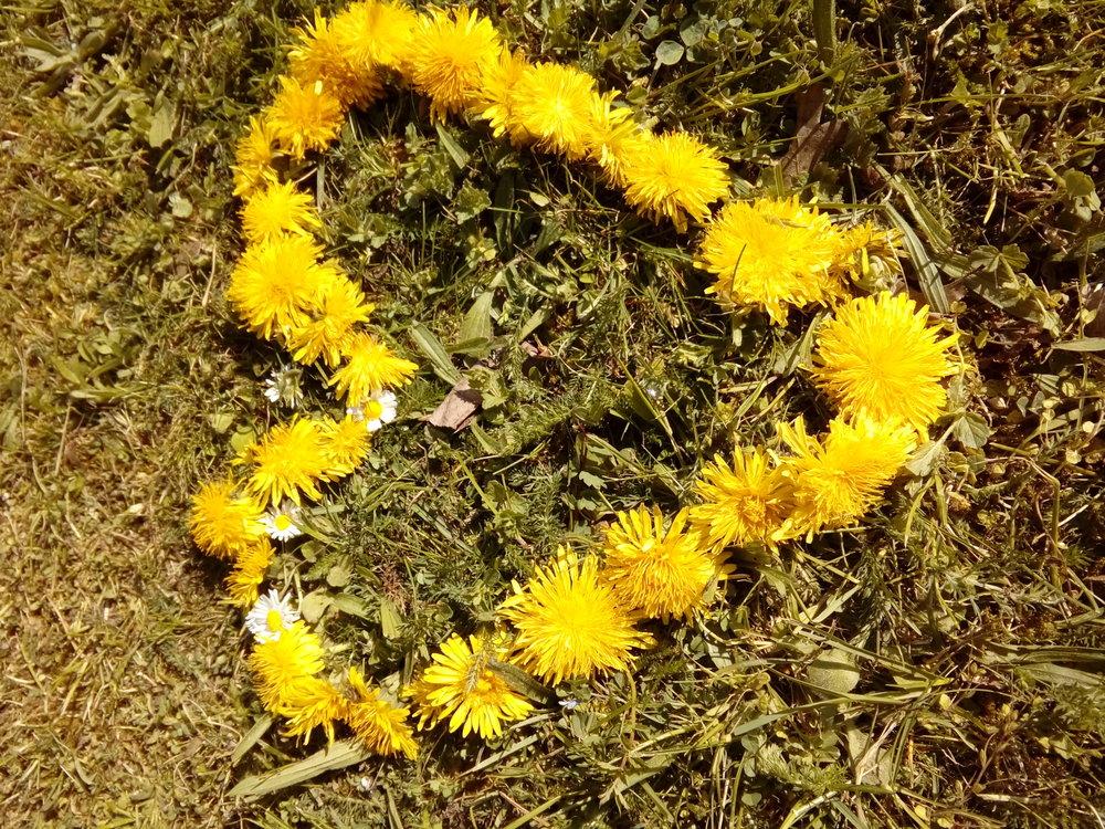 Ein Herz aus Löwenzahn: Draußen sprießen die Ideen, in der Naturwerkstatt der vhs-Nord werden sie umgesetzt. Copyright: Ilse Wulff