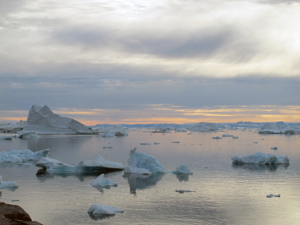 Icebergs in the midnight light.