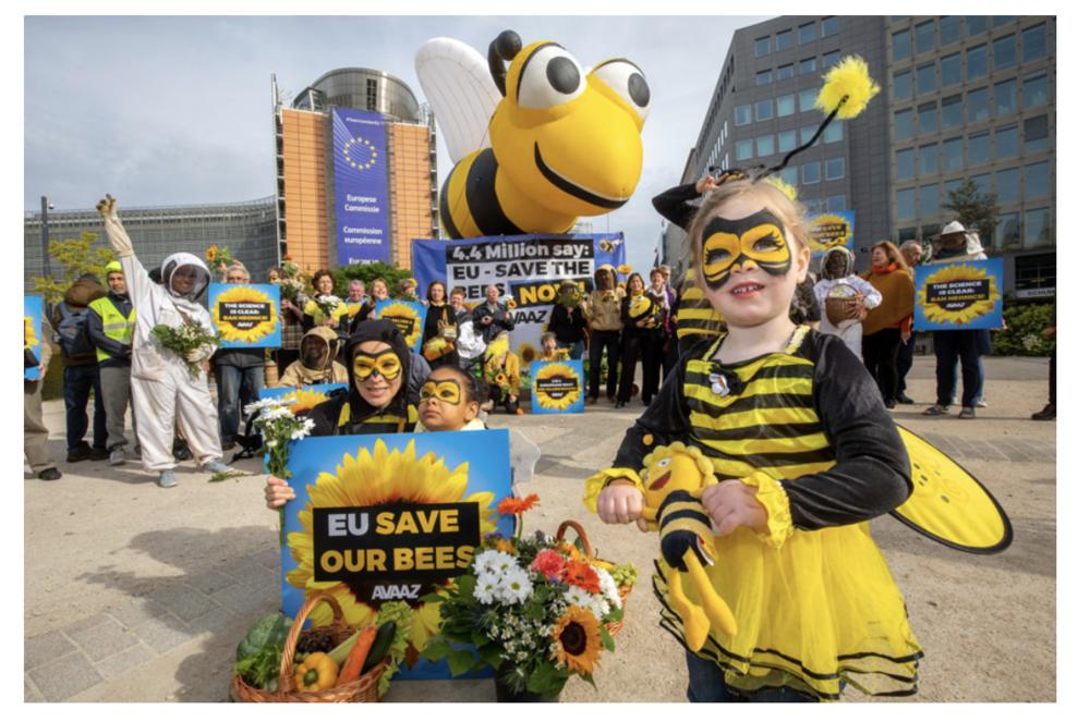 AVAAZ Bees.png