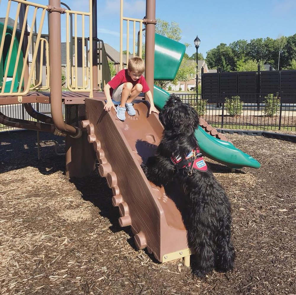 Ralphie, one of Ry-Con's trained Briard service dogs, accompanies his charge on the playground.