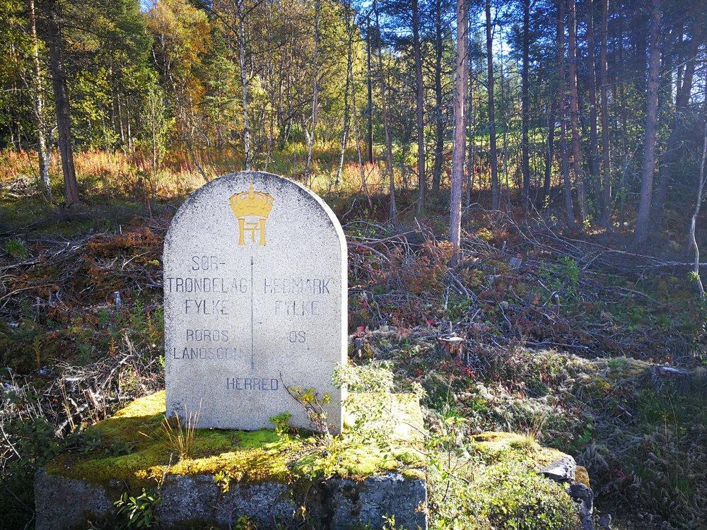 Entering Hedmark fylke (county). Woop!