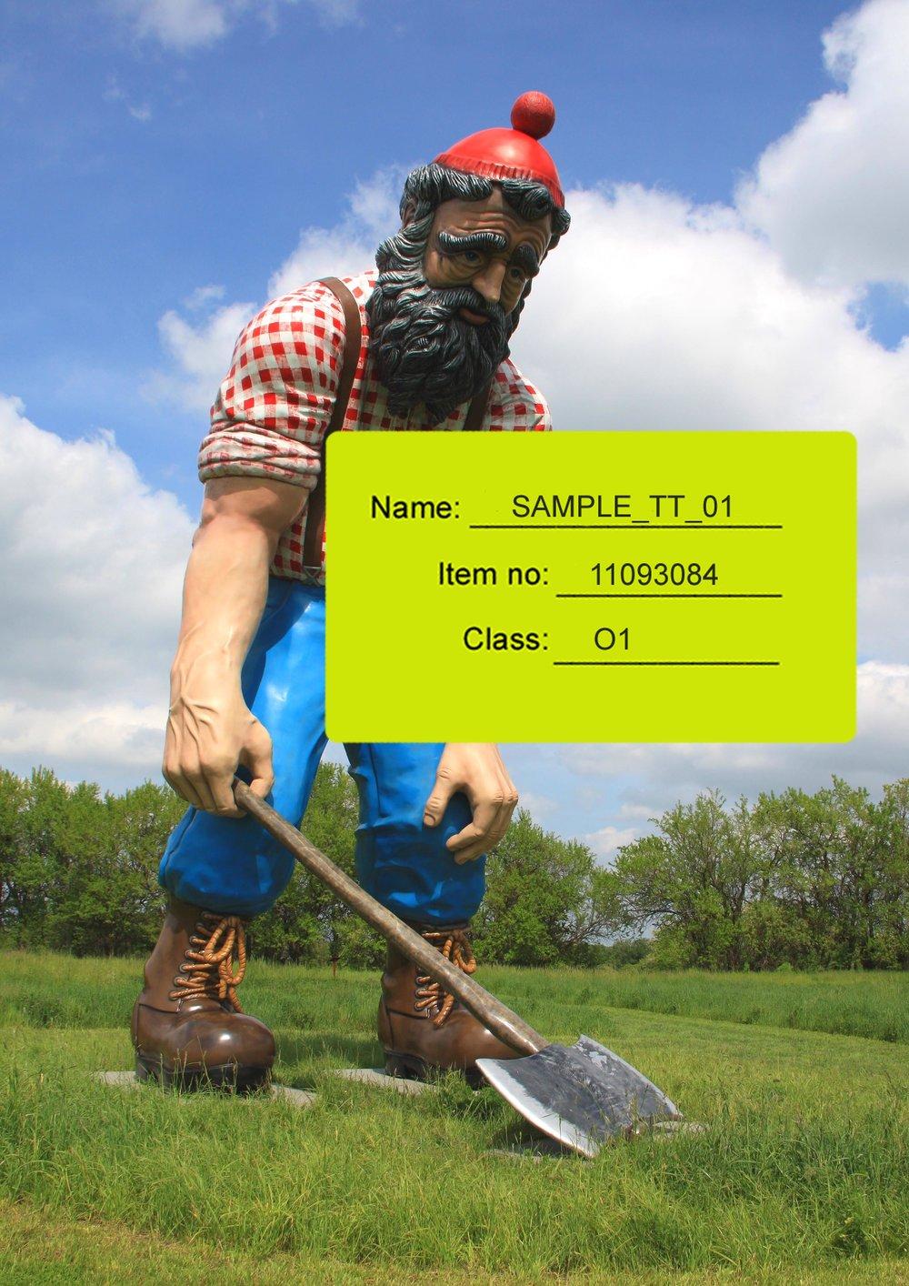 SAMPLE_TT_01.jpg