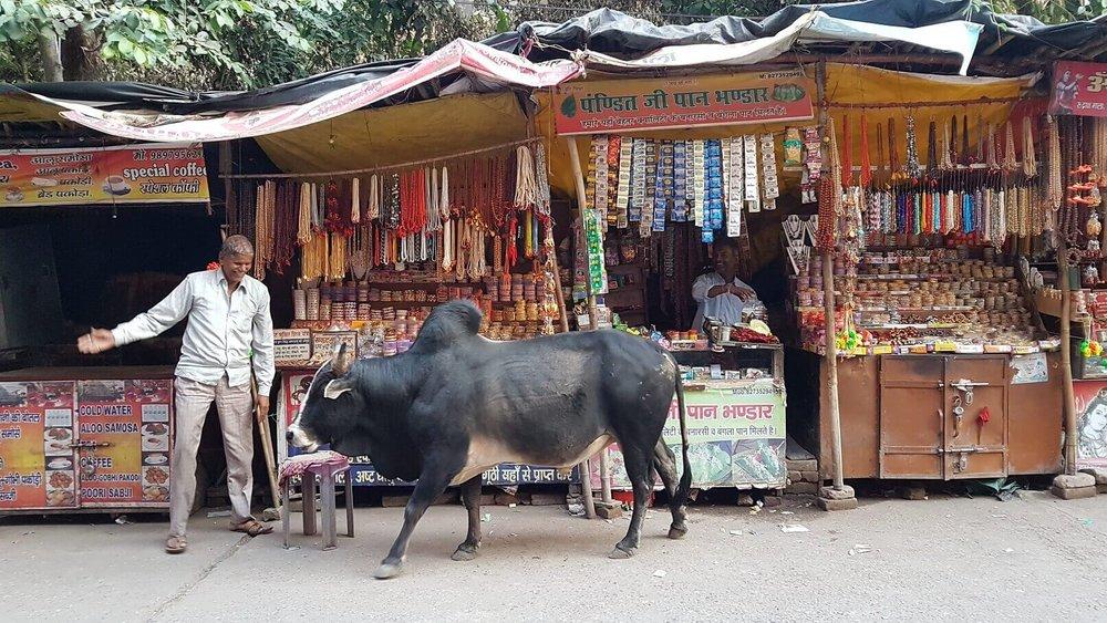 spiritual tours india - Rishikesh - street market.jpg
