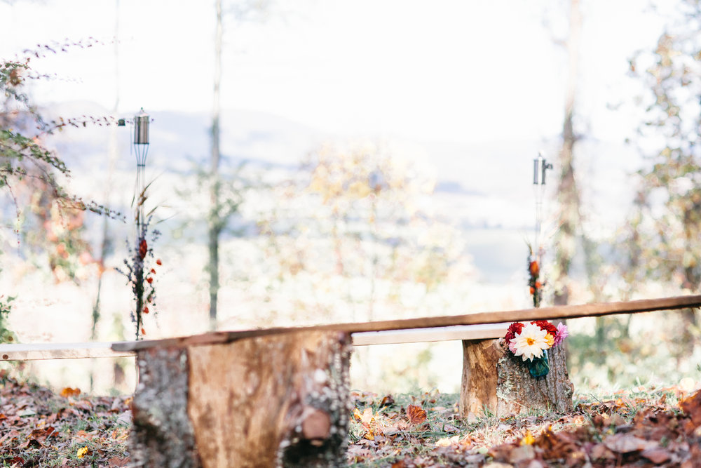 Sarah + Ben: Intimate DIY Mountain Wedding in Elk Creek, Virginia | wedding photographer | Merritt Chesson Photography