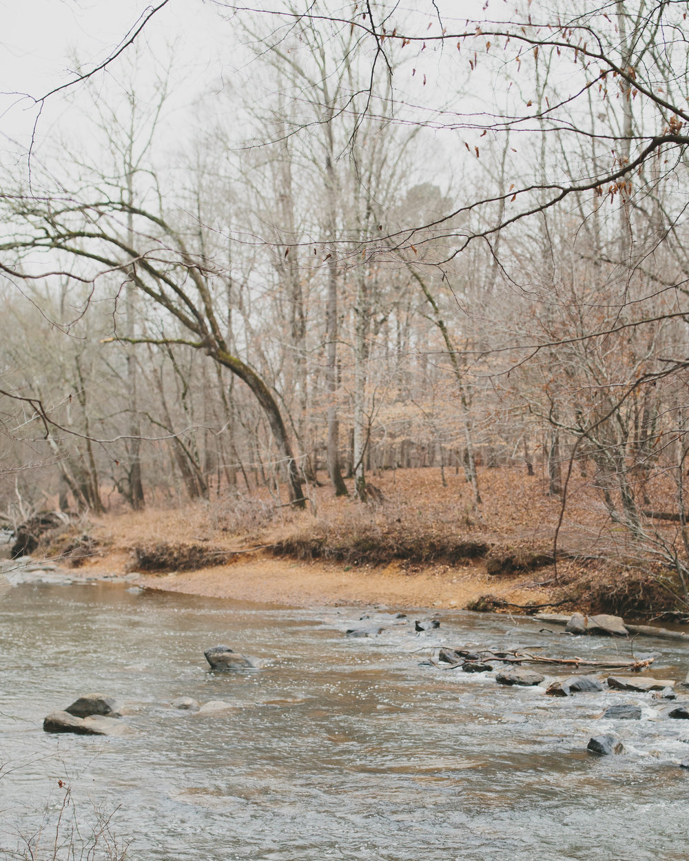 Eno River State Park, Few's Ford Access | Durham, NC | Merritt Chesson Photography