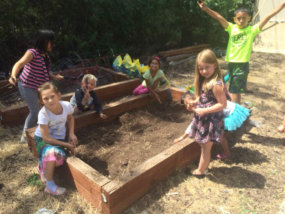 The children got their hands dirty during a lesson on weeding and tending their garden