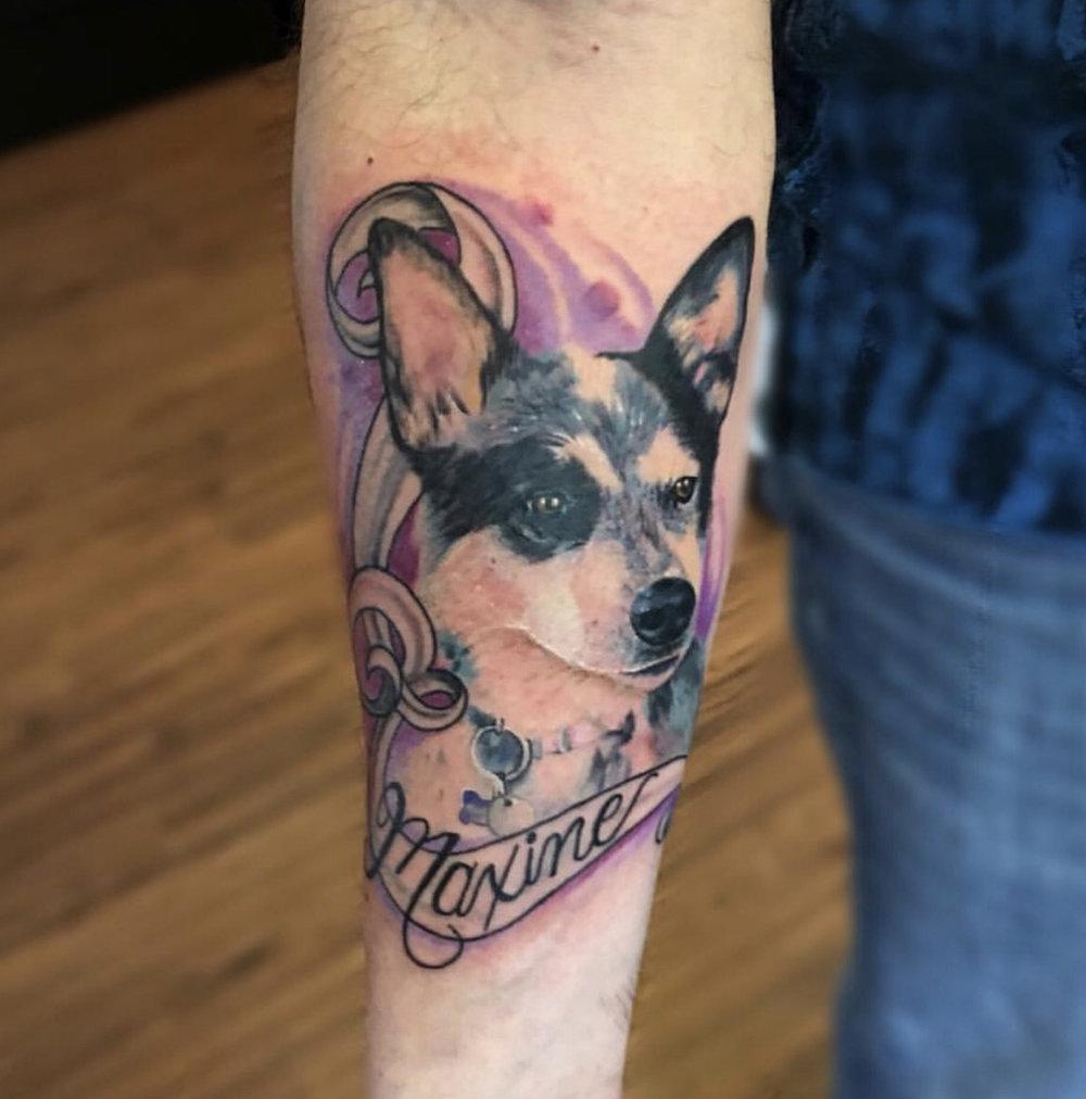 maxine dog.jpg