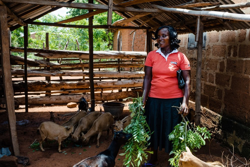 IADES began to provide loan to farmers in 2015  60% of Togo's population live in rural areas, trying to ear an income while coping with the harsh climate and rain shortages.