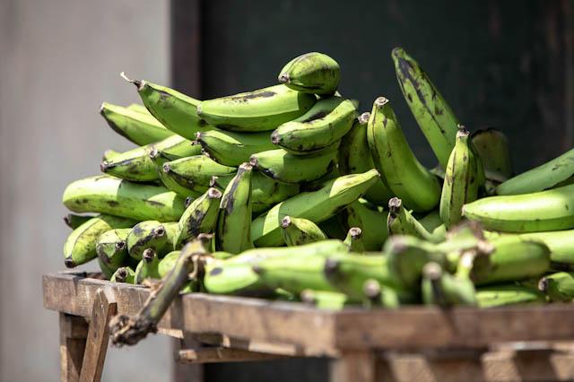 Bananas - Uganda.jpg