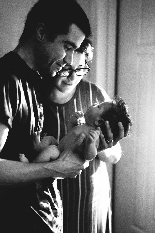newborn portraits, pinellas county fl