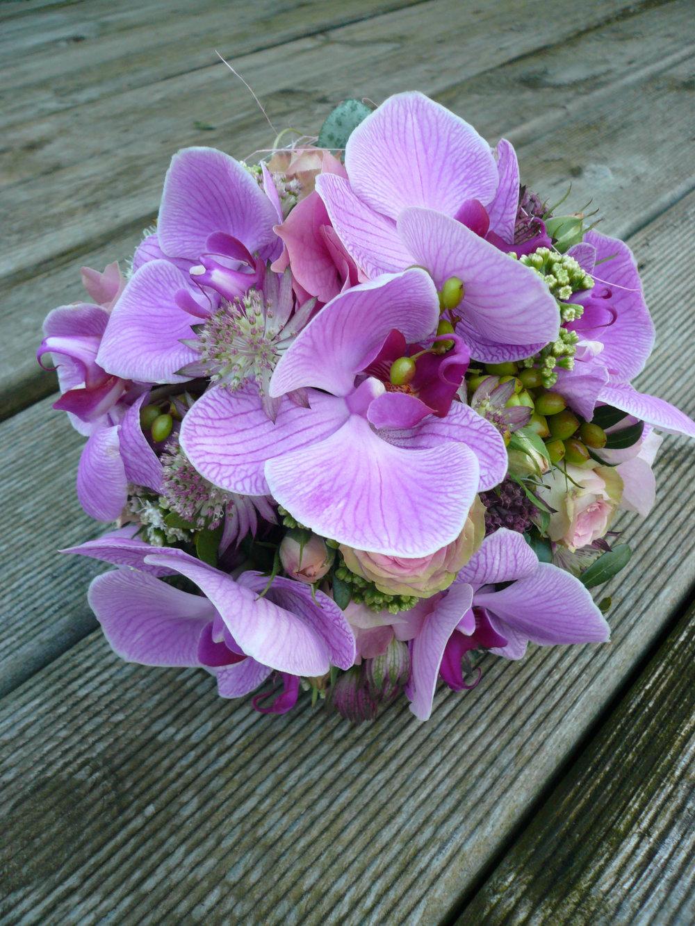 KLZarter Orchideentraum....jpg