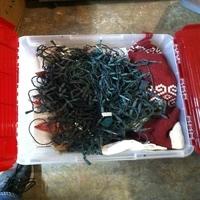 0050: Plastic Bin of Christmas Decorations