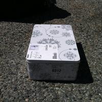 0312: Small Decorative Box#1