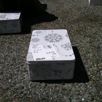 0313: Small Decorative Box#2