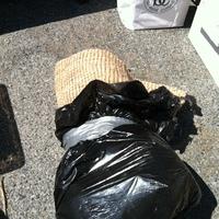 0316: Plastic Bag of Rugs