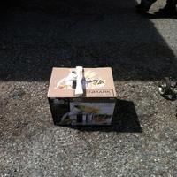 0324: Large Pasta-Cooker Set in Box