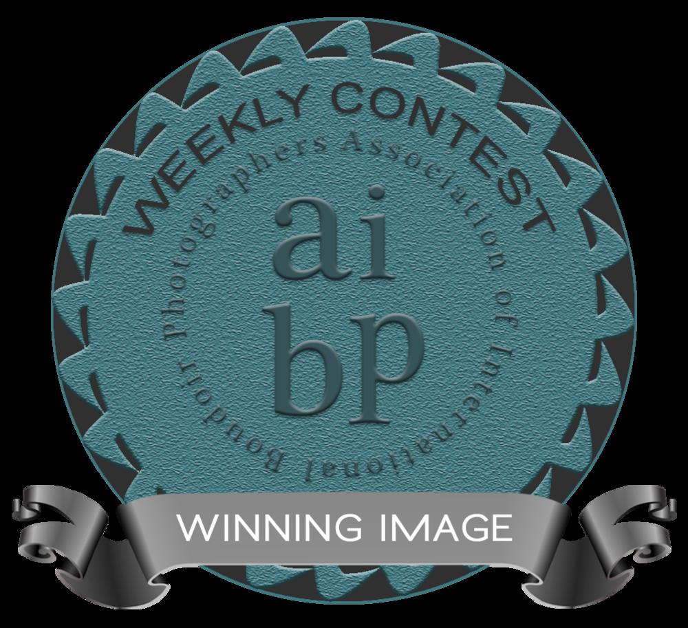 winningimage_badge.png