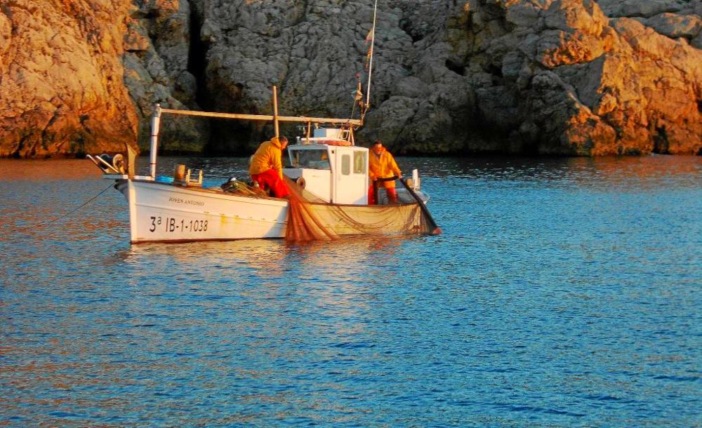ph: periódico de Ibiza
