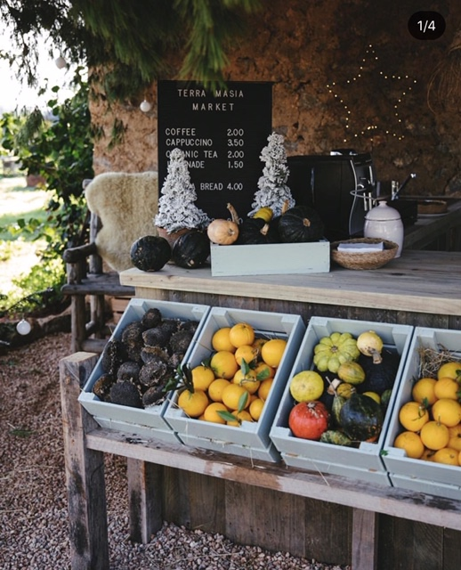 Pasa un día en el campo colaborando con Terra Masia y llévate una cesta de verduras eco a casa. - Consulta las redes de TERRA MASIA para horarios y novedades